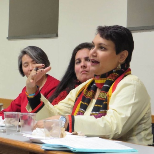 Dr. Farhana Sultana at the Democratizing Knowledge Faculty Panel, Syracuse University, 2015