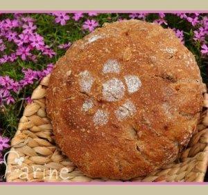 Apricot Loaf (80% whole wheat)