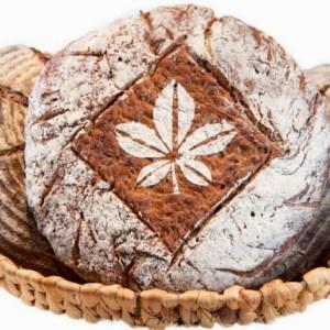 Chesnut Bread with Cocoa Nibs