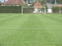 Our hallowed turf where our players perform wonders
