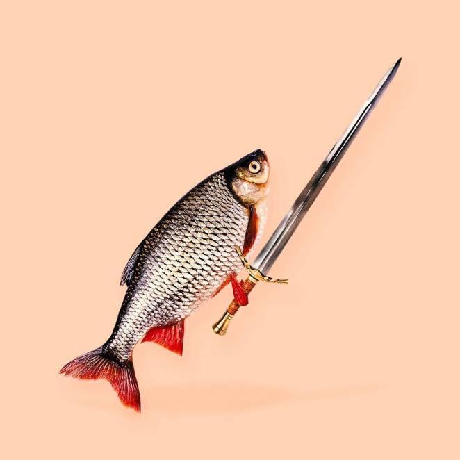 balık-kılıc