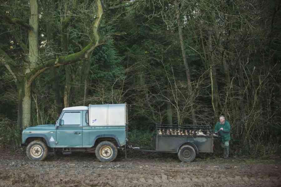 the shoot truck