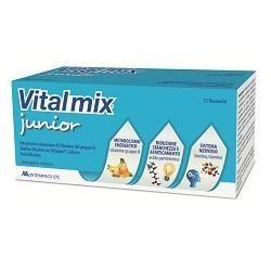 Vitalmix junior 12