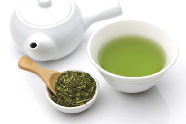 Tè verde (EGCG) nelle infezioni e nell'antibiotico resistenza