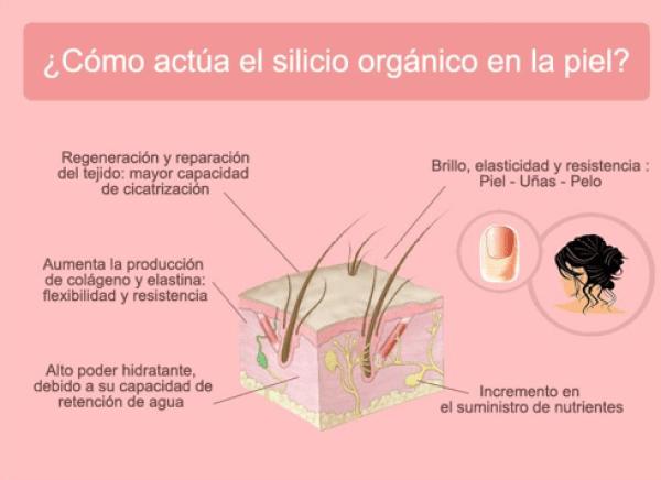 Resultado de imagen de silicio organico inyectable