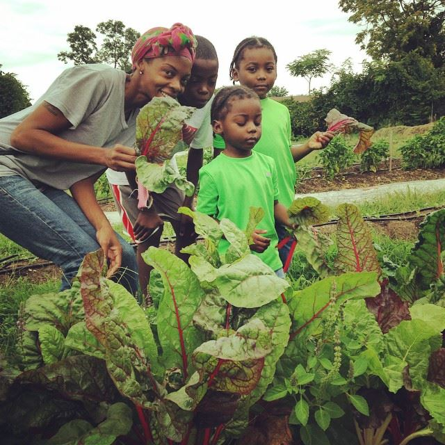 Cherry Hill Urban Garden  Farm Alliance of Baltimore