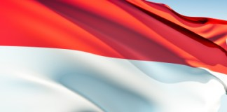 Tenaga Farmasi Indonesia