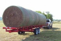 hay and shavings at Farmer's Coop