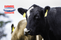 Farmer's Coop cattle and cattle feeds