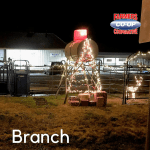 Christmas Tree Challenge at Farmers Coop Branch