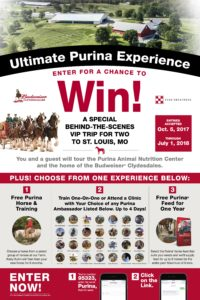 Ultimate Purina Experience flier