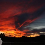 2O81 - Lynette French - Firey Sunset in the Outback