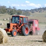 4O03 - Dawn Berkery - Making Hay While it Shines