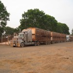 4O46 - Danille Fox - Loading the last trucks before the wet season