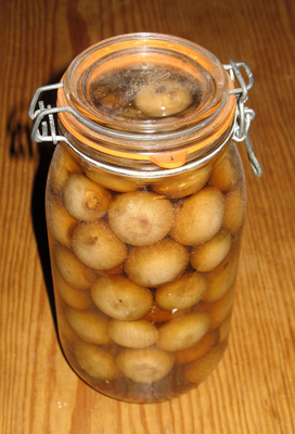 Pickled onions - Granny B's recipe. Photo by Roly Wiliiams