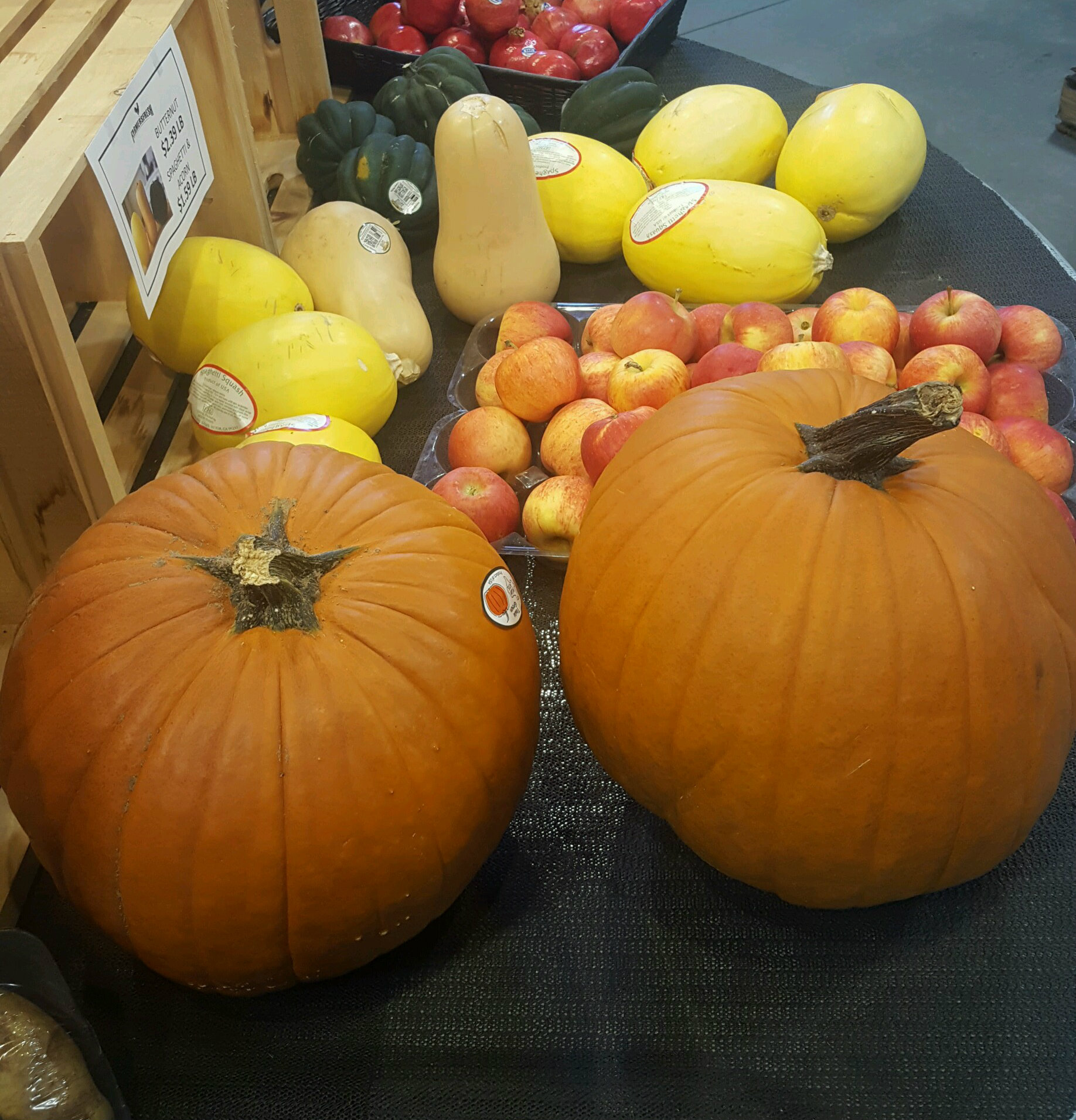 Pumpkins…Rich Color…Crisp Air = Autumn
