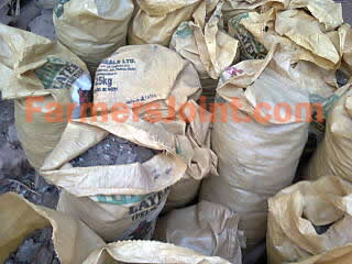 Manure in Chicken Feed Sacks