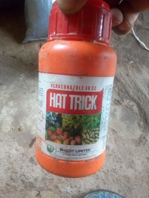 Hat Trick Fungicide contains Hexaconazole 40% SC (Soluble Concentrate)