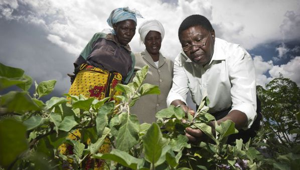 Biosciences key to solving agricultural challenges