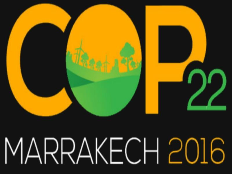 African Agriculture, Key Theme on COP22 Agenda: Mezouar