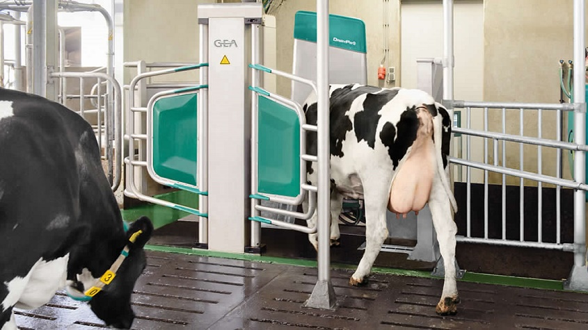 GEA Monobox Automated Milking System cleared by FDA for the production of Grade A milk