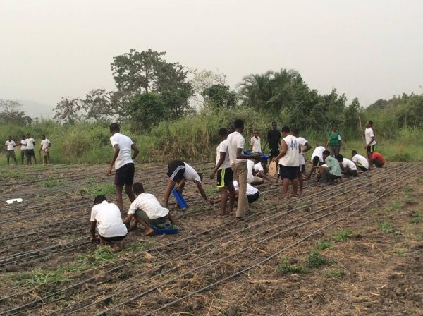 At what point can we say youths are actively involved in farming?