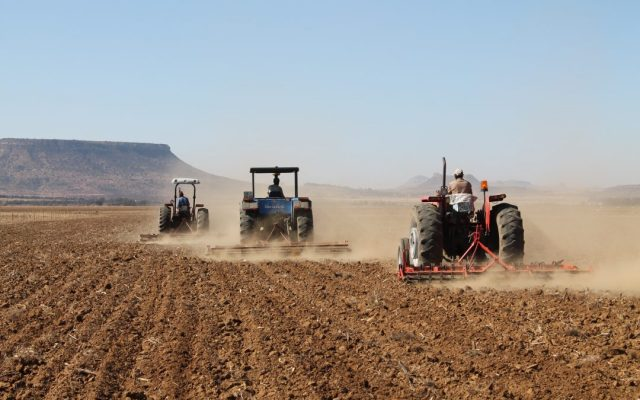 A macroeconomic impact assessment of a policy of land expropriation without compensation in South Africa