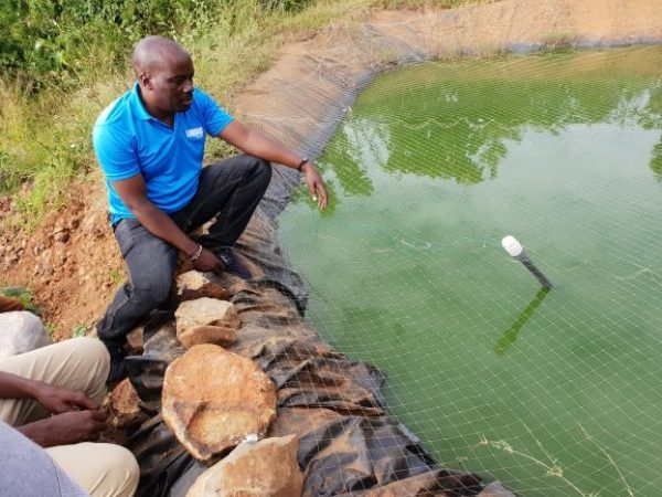 Liquid Telecom Kenya's IoT network enables fish farmers to monitor ponds and increase production
