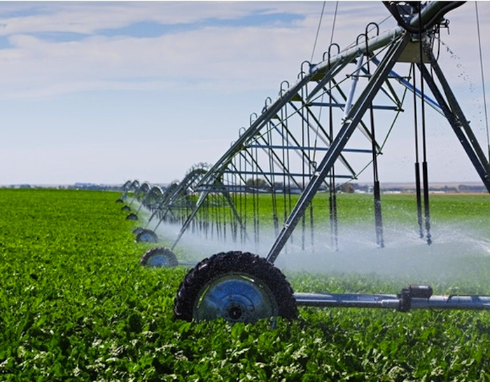Poland to invest in Tanzania's agriculture sector through irrigation farming