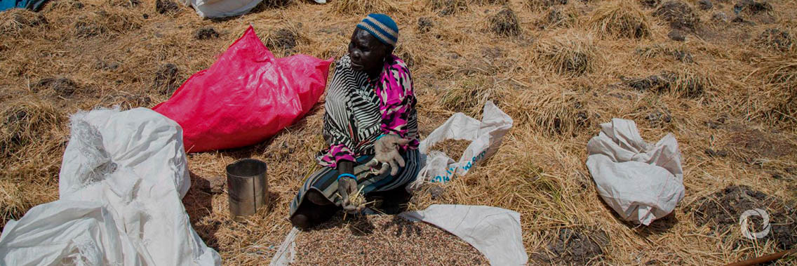 South Sudan: Thousands receive food, thanks to the African Development Bank, World Food Programme