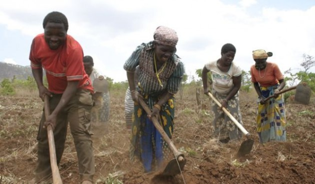 New rural finance project to help boost rural enterprise sector in Mozambique