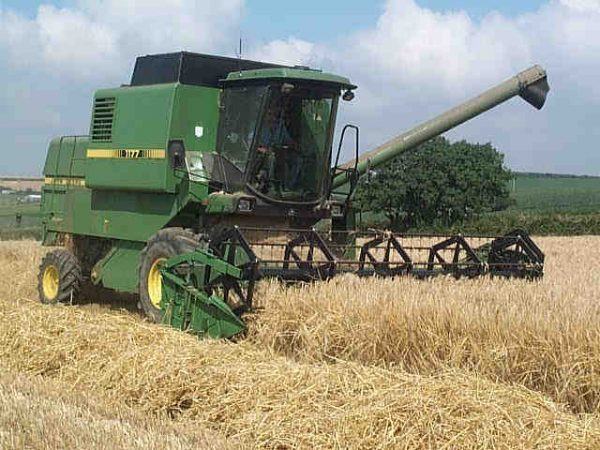 Impact of interest rate cut positive for Agriculture