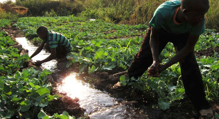 Tanzania: African Development Bank project tripled incomes of rural producers and traders
