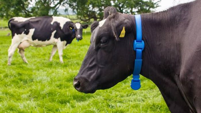 Adoption of precision agriculture to match fertilizer inputs in livestock farming