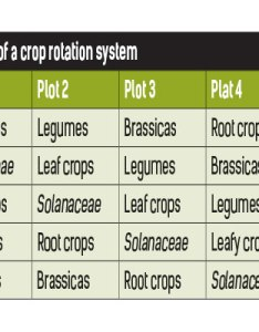 Crop rotation system also understanding rh farmersweekly