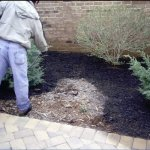 9600-Sq-Feet-Black-Forest-Mulch-Color-Concentrate-0-0