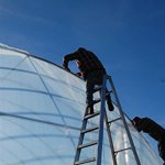 Greenhouse-Clear-Plastic-Film-Polyethylene-Covering-Gt4-Year-6-Mil-20ft-X-25ft-By-Growers-Solution-0-1