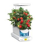 Miracle-Gro-AeroGarden-Sprout-LED-with-Gourmet-Herb-Seed-Pod-Kit-Black-0-1