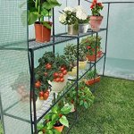 Ogrow-Extra-Large-Heavy-Duty-WALK-IN-2-Tier-12-Shelf-Portable-Lawn-and-Garden-Greenhouse-0-0