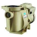 Pentair-011018-IntelliFlo-Variable-Speed-High-Performance-Pool-Pump-3-Horsepower-230-Volt-1-Phase-Energy-Star-Certified-0