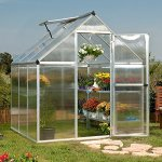 Poly-Tex-Nature-6-x-6-Foot-Greenhouse-Silver-Frame-Twin-Wall-Greenhouse-0