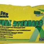TriPro-Annual-Ryegrass-Seed-50-Pound-0