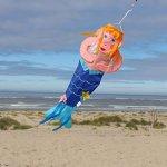 In-the-Breeze-Merry-Mermaid-Wind-Friend-3D-Windsock-0-0