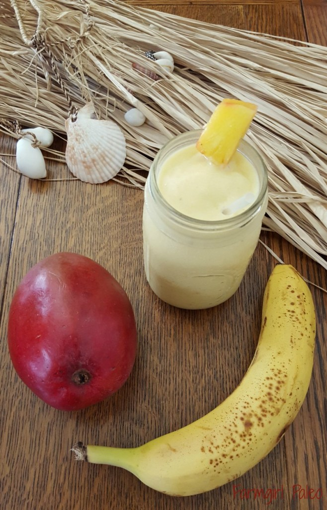 Paleo Tropical Fruit Smoothie