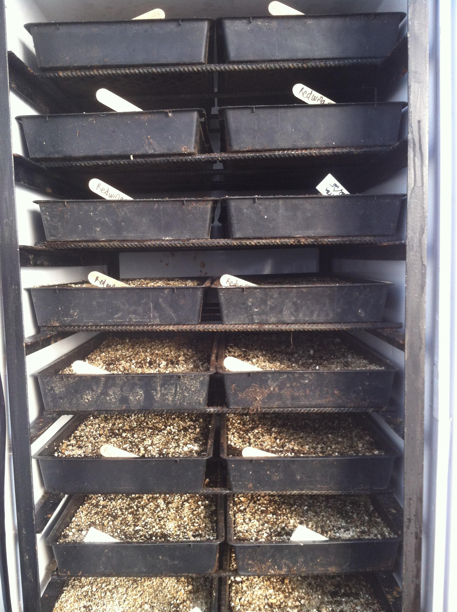 Sweat Box Germination Chamber  Farm Hack