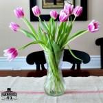 Tulips – Yes Please!