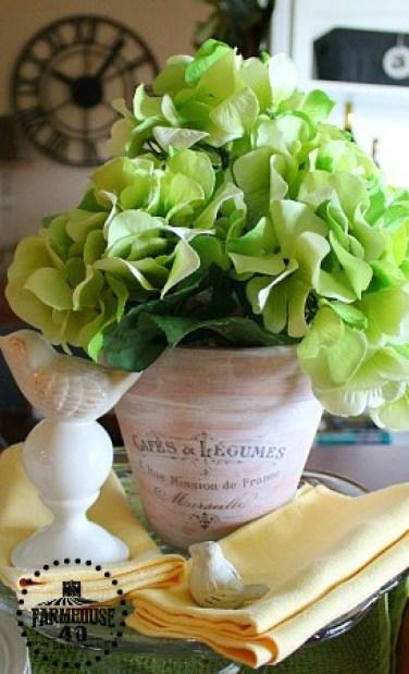 vignette close up flower pot