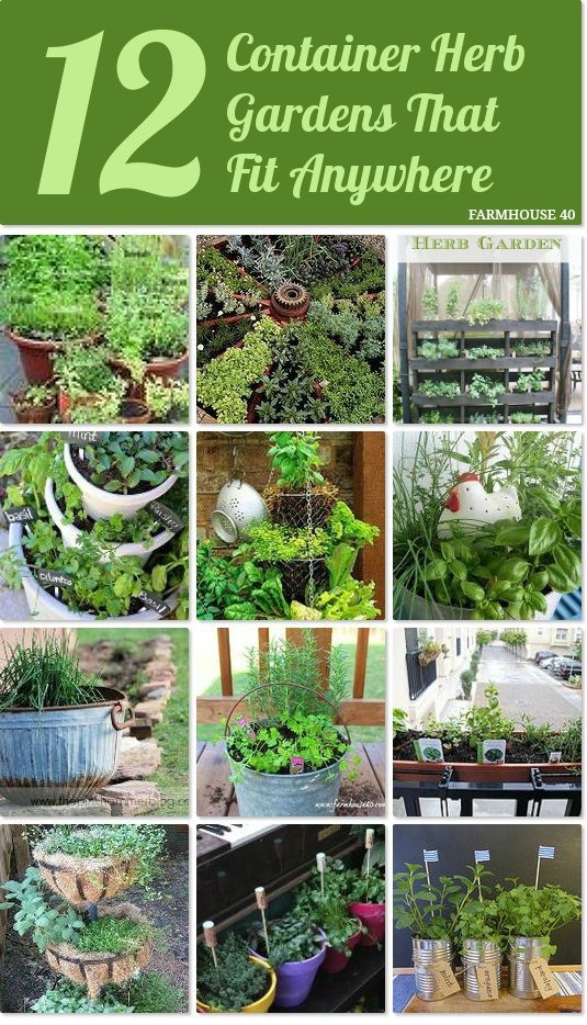 12 Container Herb Gardens