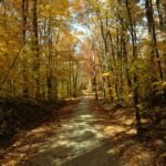 Things I'm Loving Lately – About Fall