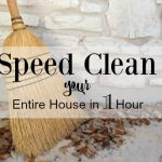 HOW TO SPEED CLEAN YOUR HOUSE